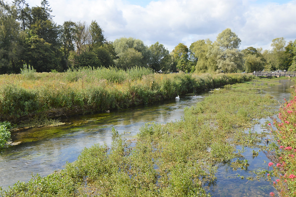 The River Coln flows through Bibury in the Cotswolds