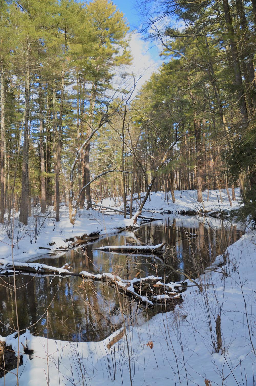 Stream flowing through Mine Falls Park in Nashua NH