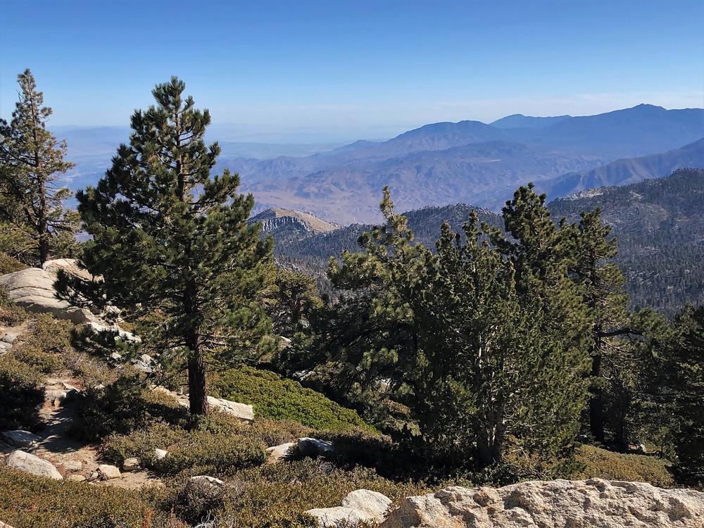 Santa Rosa Mountain Range with Toro Mountain (8,717 ft) from San Jacinto summit trail