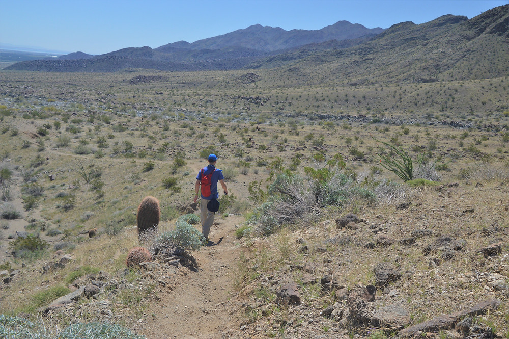 Entering Lost Canyon in Santa Rosa Mountains