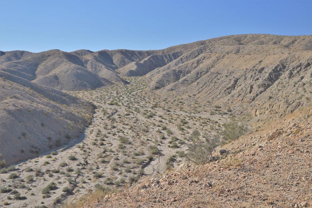 Wash on Willis Palms Loop Trail in foothills of Little San Bernardino Mountains