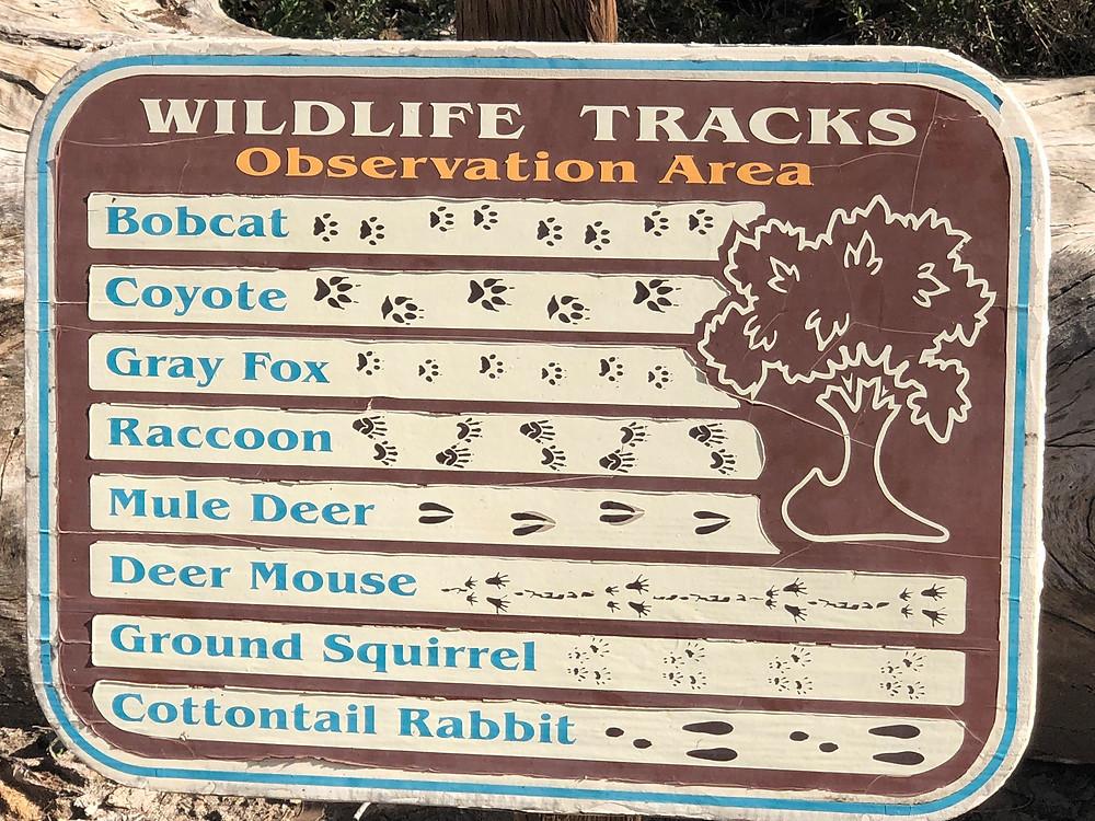 Wildlife tracks poster at the Big Morongo Canyon trailhead