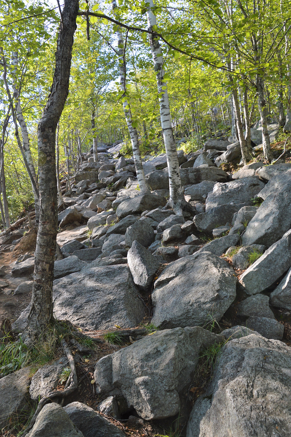 Mount Monadnock rocky and eroded White Dot Trail
