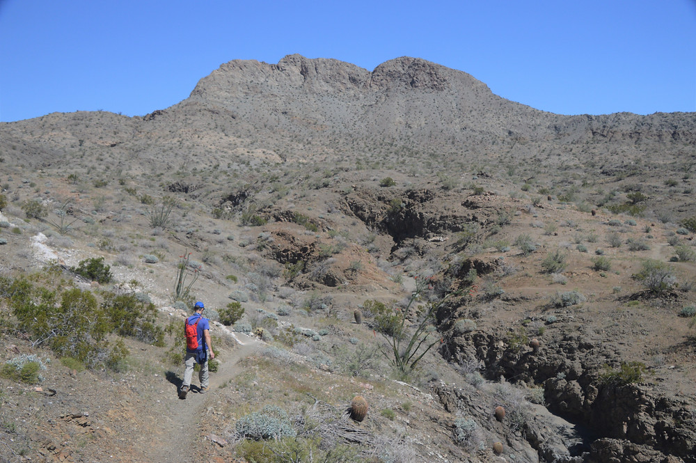 Hiking the Boo Hoof trail in Santa Rosa Mountains