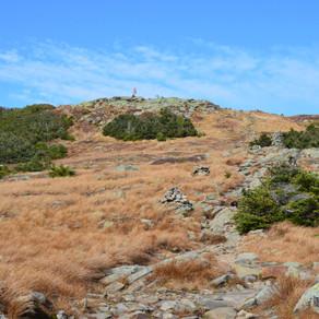 Hike Mt Moosilauke: Oct 2020