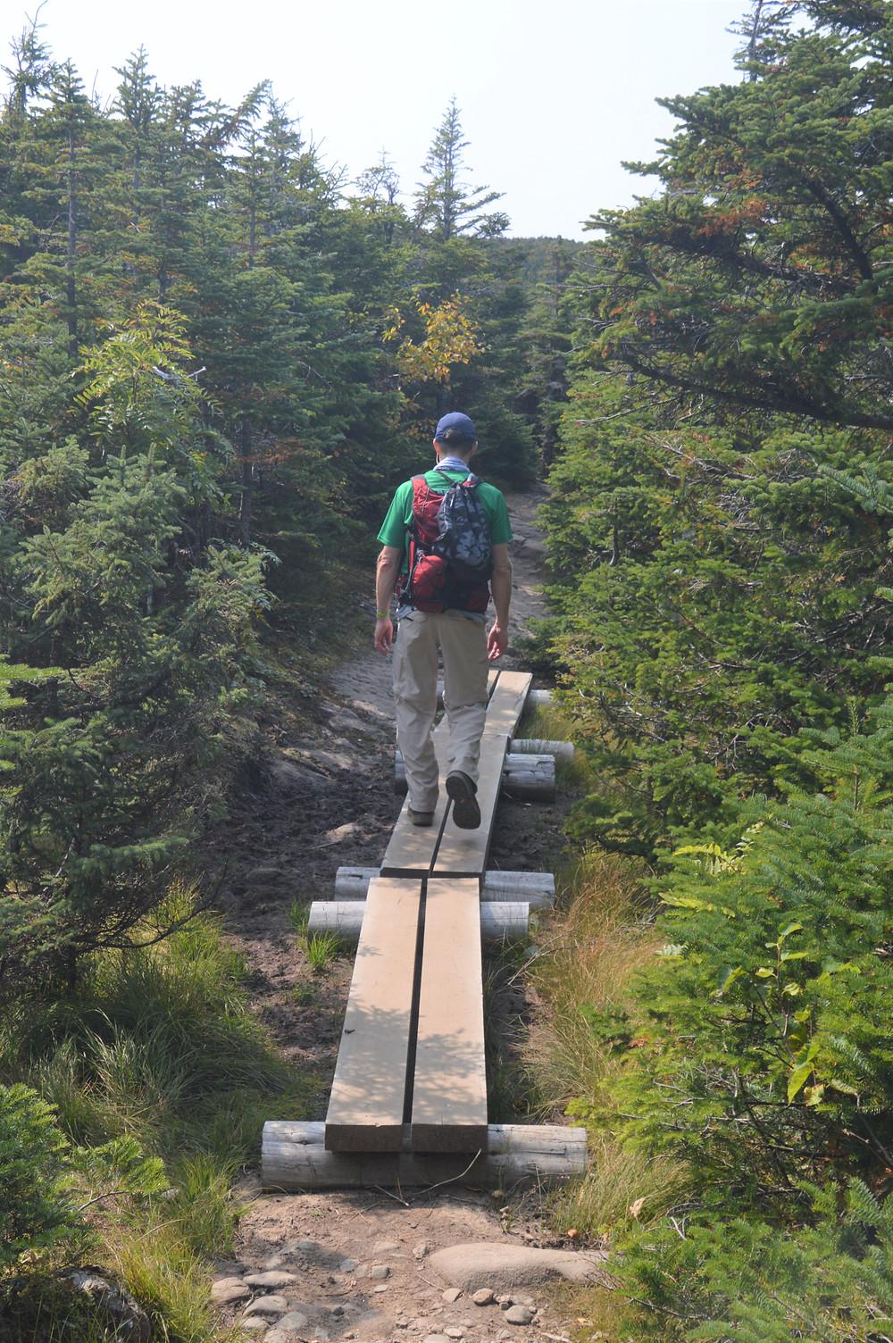 Ridgeline trail to Mt Pierce