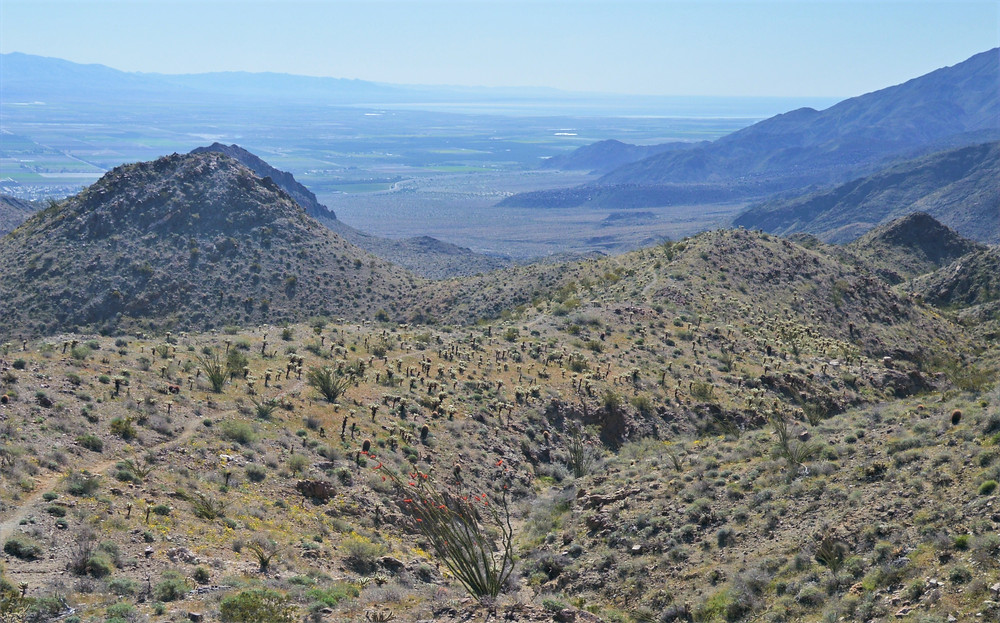 View of Salton Sea from Boo Hoff trail in Santa Rosa Mountains