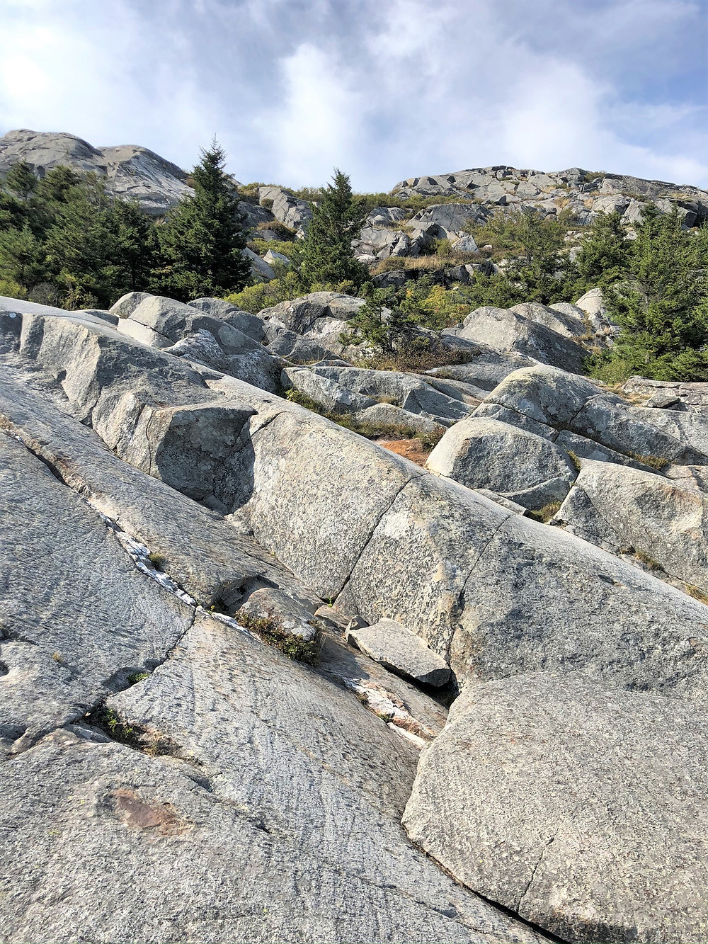 White Dot Trail leading from Mount Monadnock summit