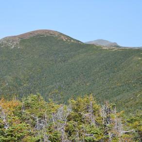 Hike Mt Eisenhower and Mt Pierce via Edmands and Crawford Path Loop: Sep 2020