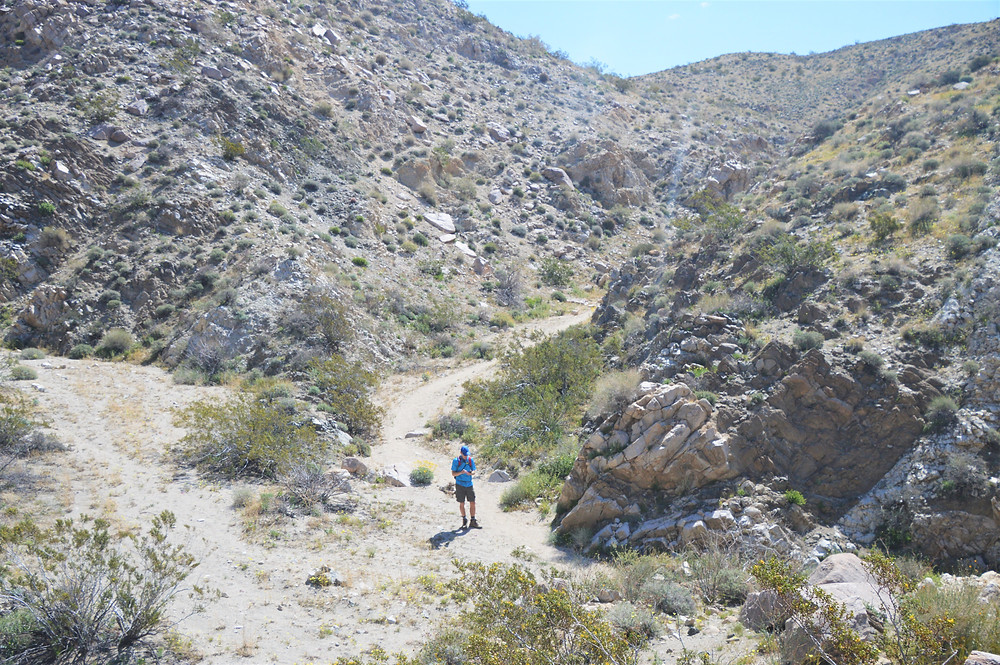 Hiking in the wash of Chocolate Drop Trail in the Little San Bernardino Mountains