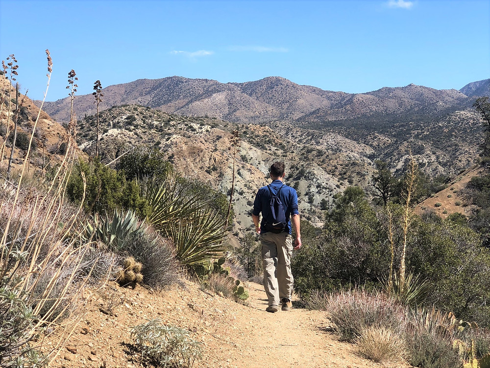 Hiking the Cactus Spring trail in the Santa Rosa Mountain Wilderness. Martinez Mountain from Cactus Spring trail