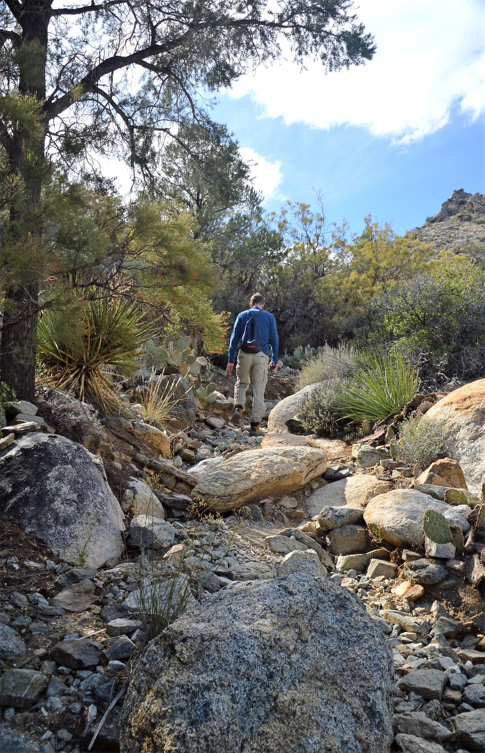 Hiking over rocky and eroded section of Cactus Springs trail in the Santa Rosa Mountain Wilderness