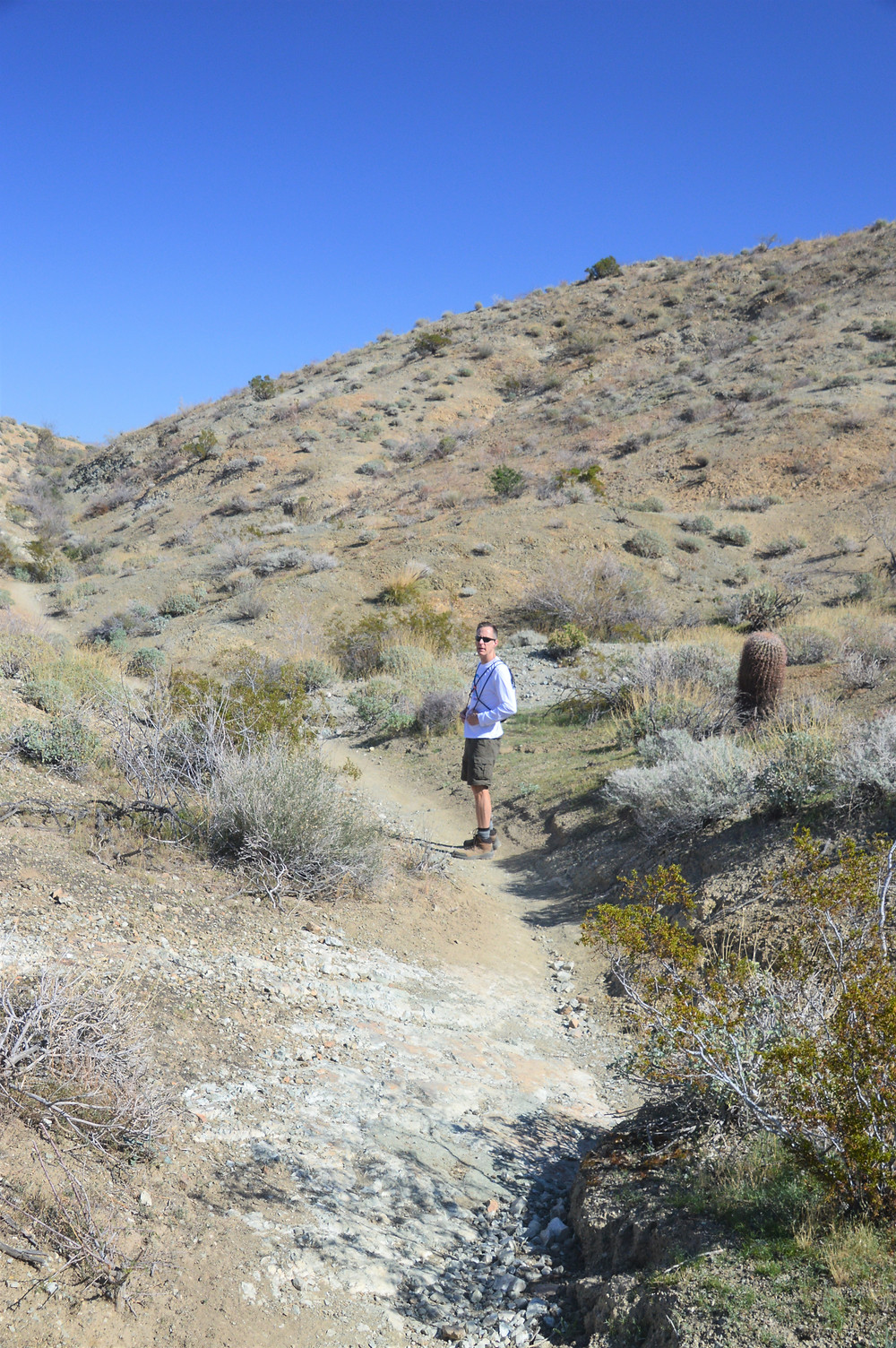 Hiking to Murray Hill in the foothills of the San Jacinto and Santa Rosa Mountains