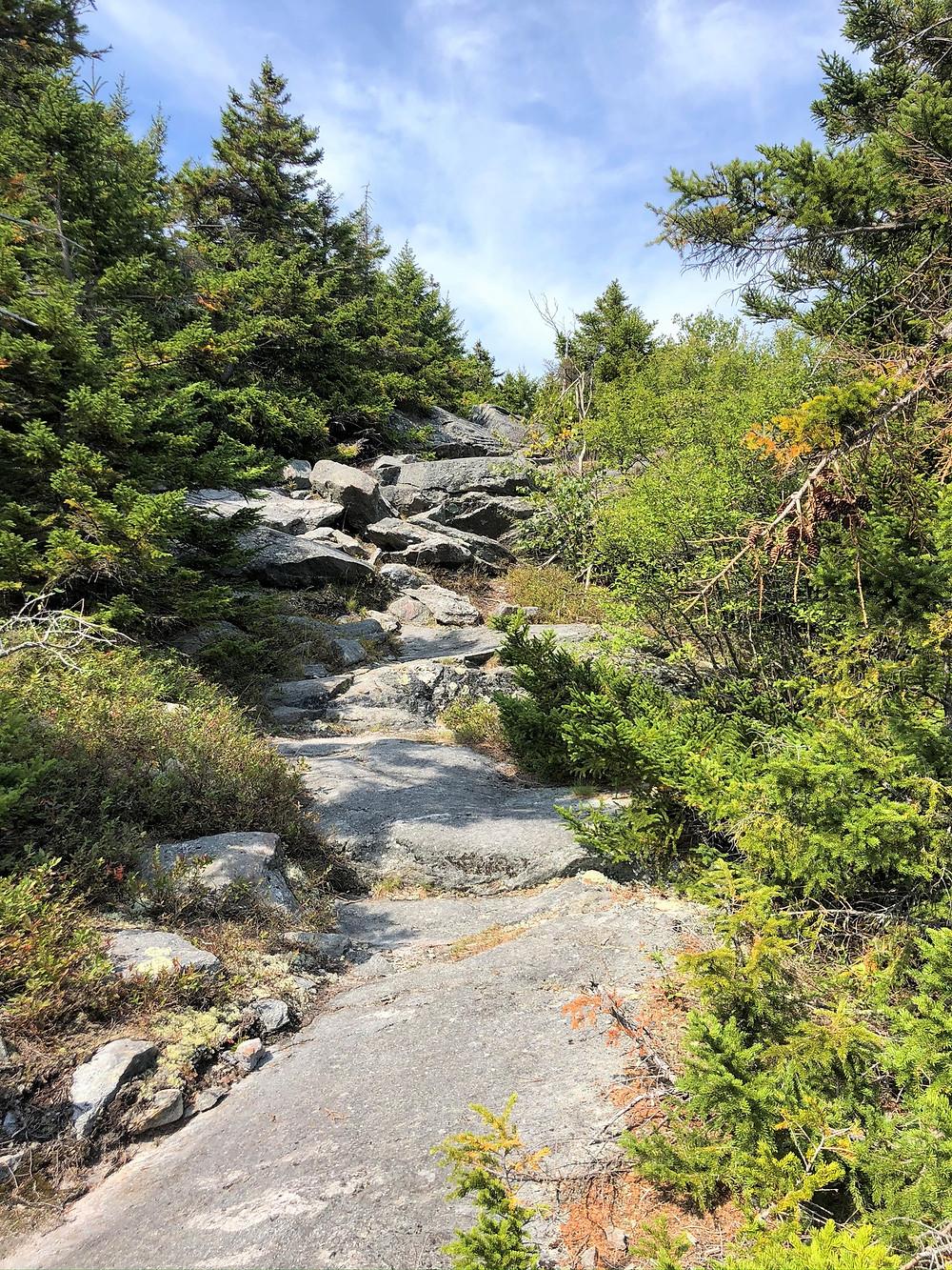 Mount Monadnock Cascade Link Trail
