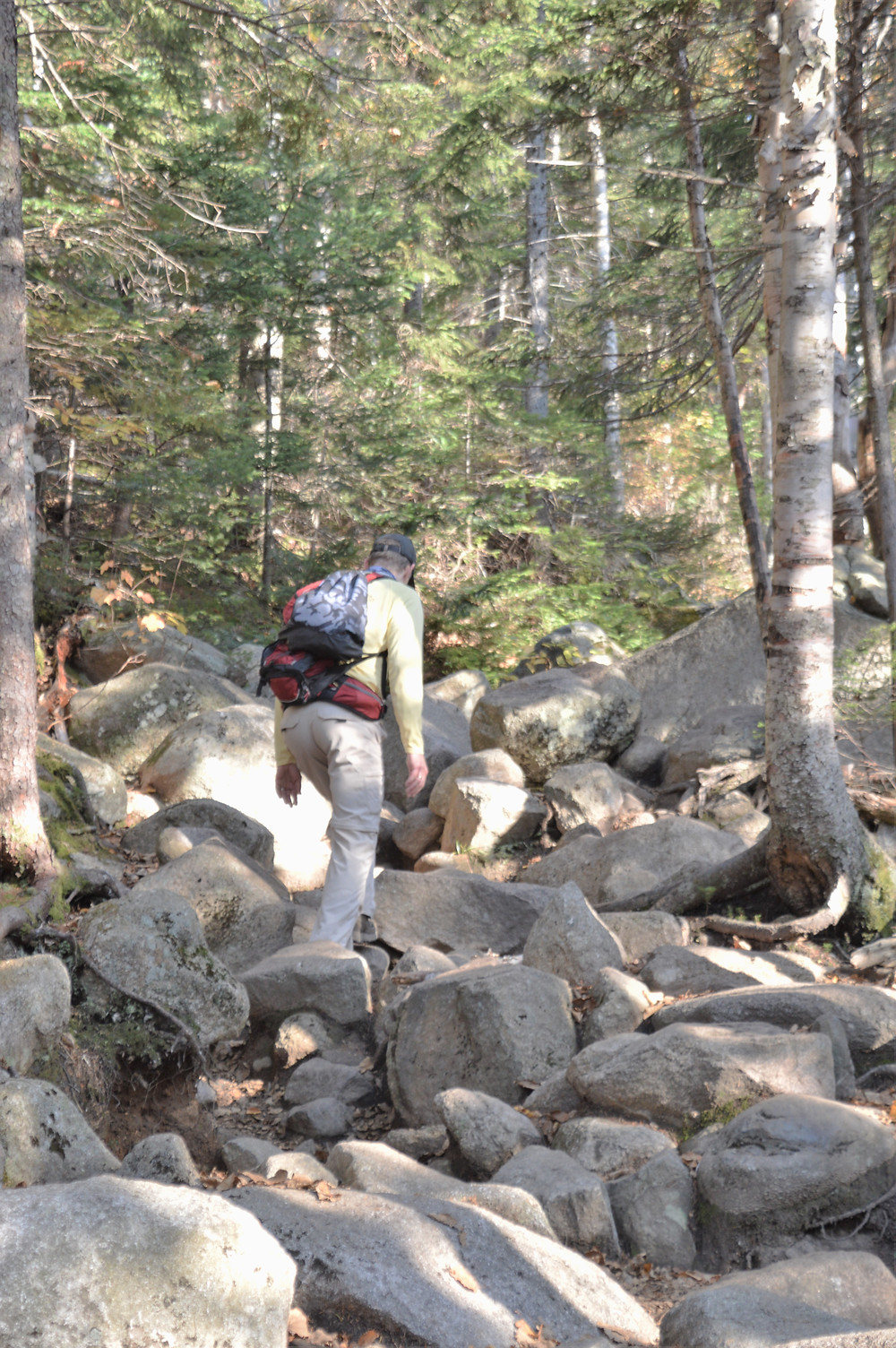 Eroded and rock covered trail in White Mountains of NH..  Mt Lafayette via Old Bridle Path.