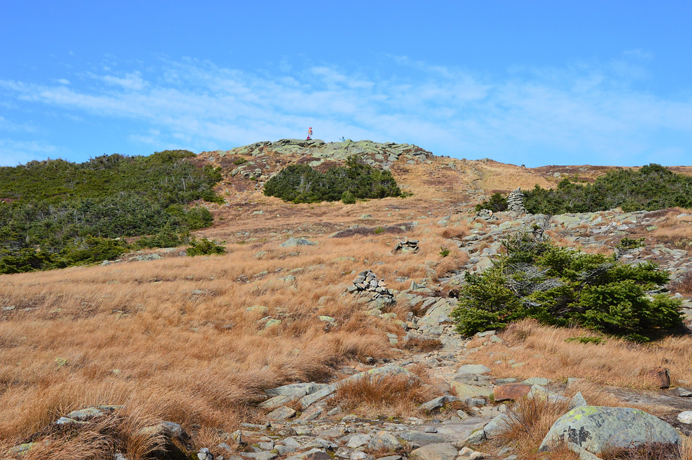 Gorge Brook Trail leading to the summit of Mt Moosilauke in NH.  NH 4000 footer