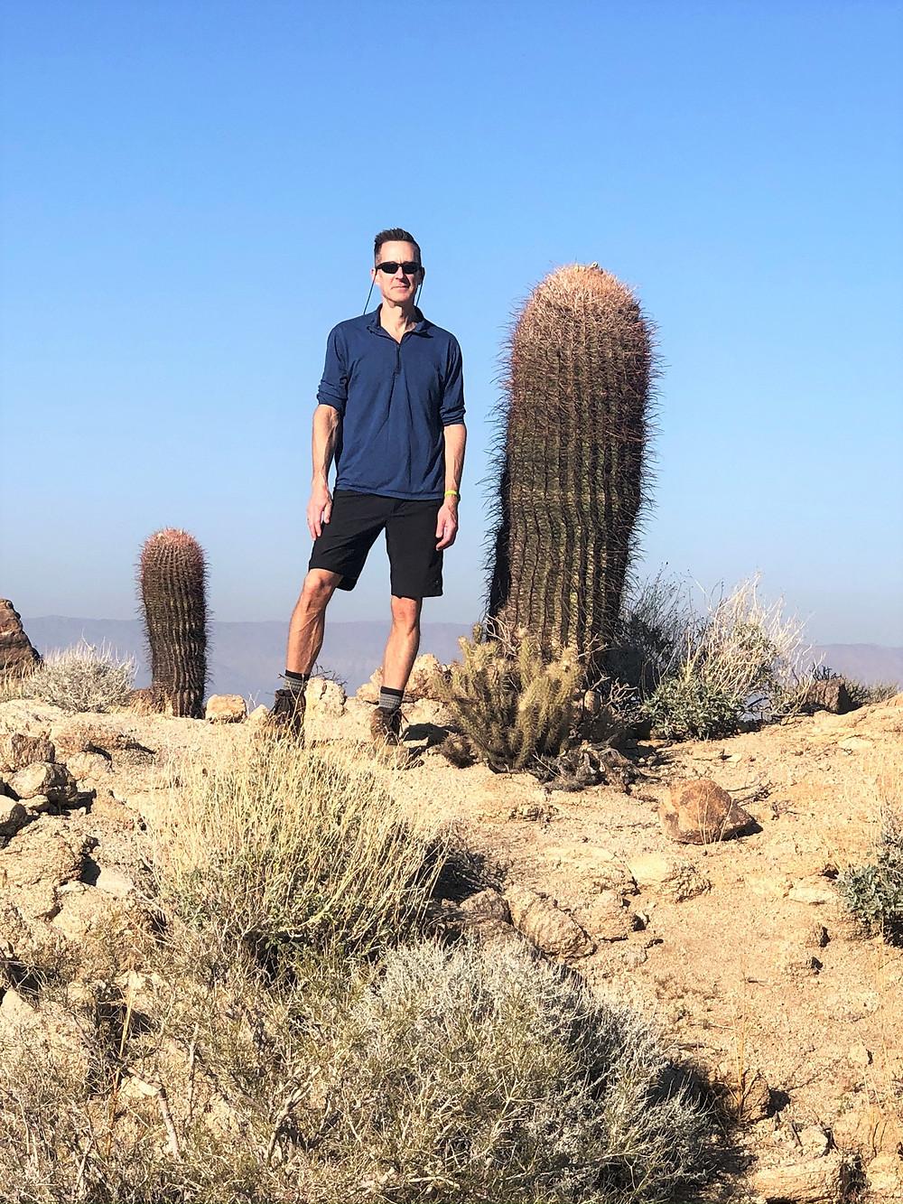 California barrel cactus along the Art Smith Trail in the Santa Rosa Mountains