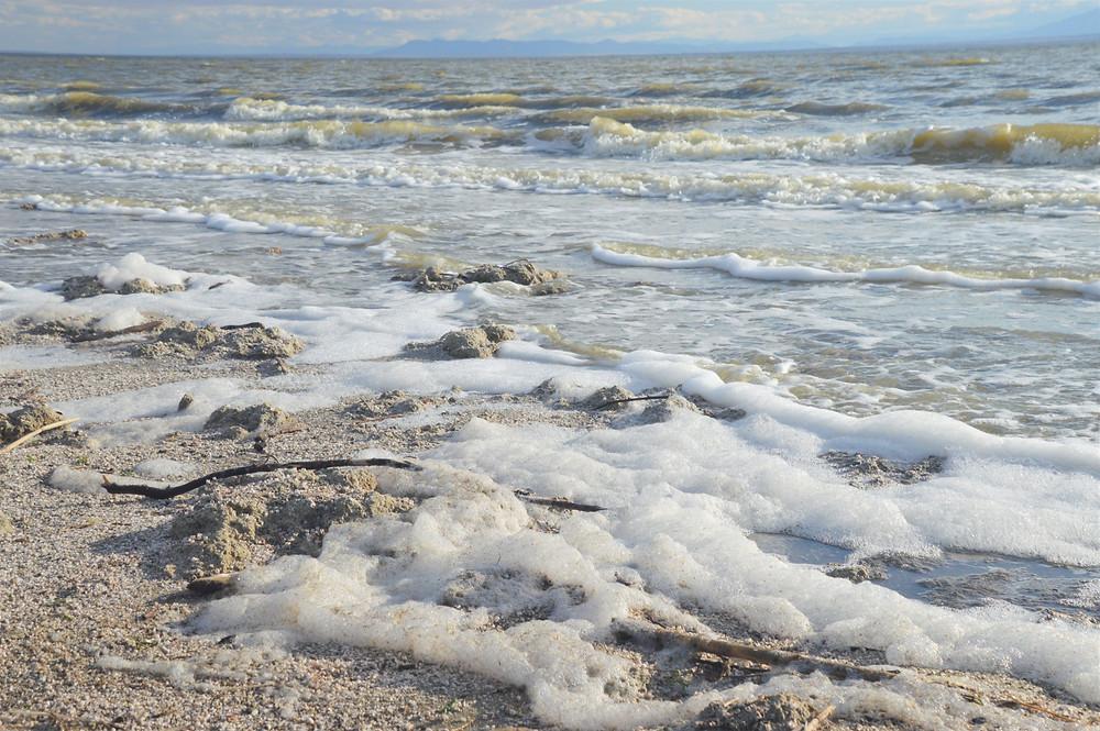 Foamy water of the Salton Sea, Agricultural runoff to Salton Sea