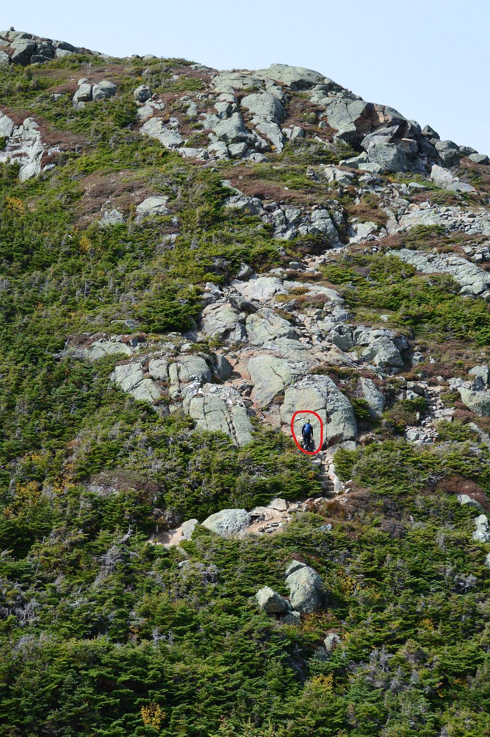 Hiker climbing rocky crag on Mt Eisenhower Loop Trail