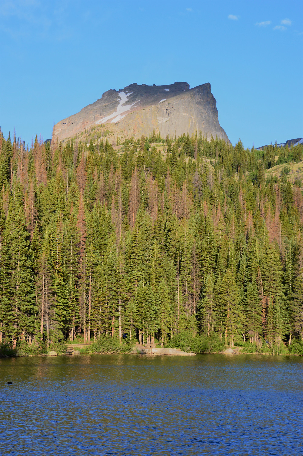 The trail starts off along the shores of Bear Lake with a beautiful view of Hallett Peak in Rocky Mountain National Park