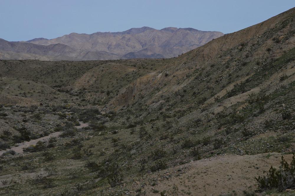Pushawalla wash and Little San Berbardino Mountains along Pushawalla Palms trail in Coachella Valley Preserve area