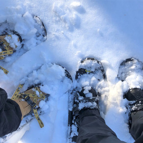 Snowshoeing In Groton Place, MA: Dec 2020