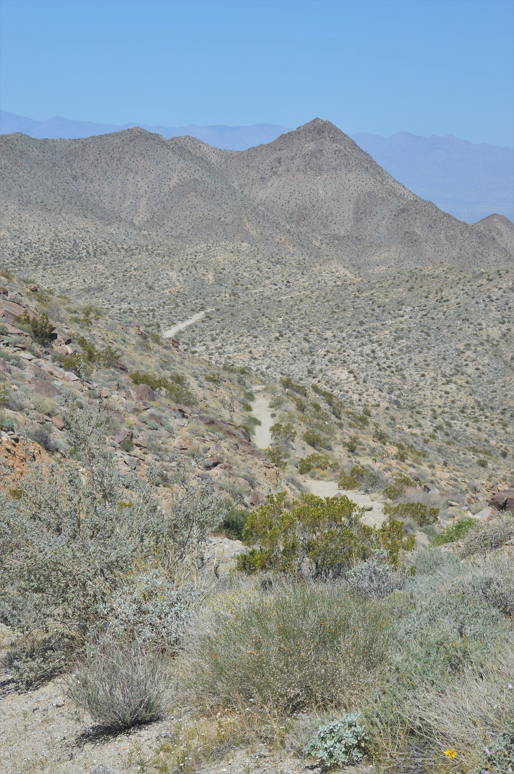 Murray Hill peak from Dunn Road in the Cathedral Canyon trail