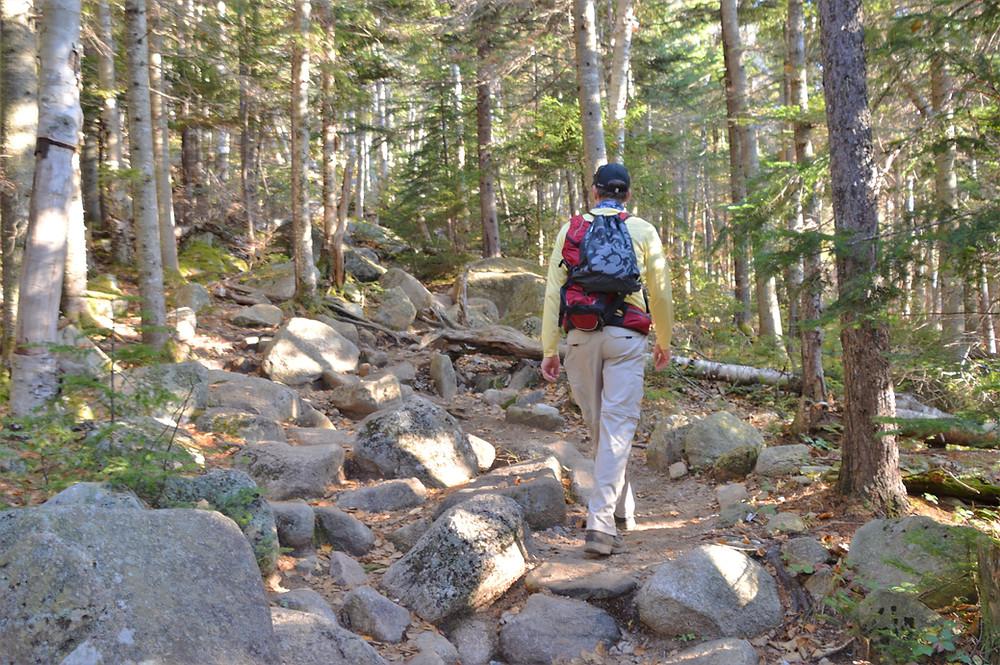 Mt Lafayette via Old Bridle Path.