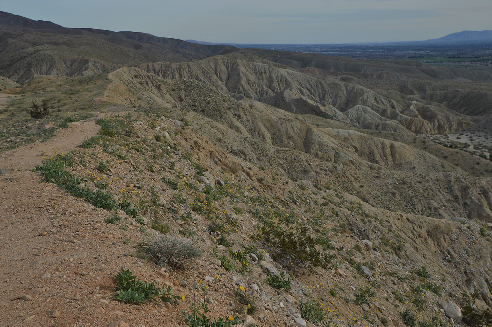 Hiking along the ridge of Pushawalla Palm trail in Coachella Valley Preserve area
