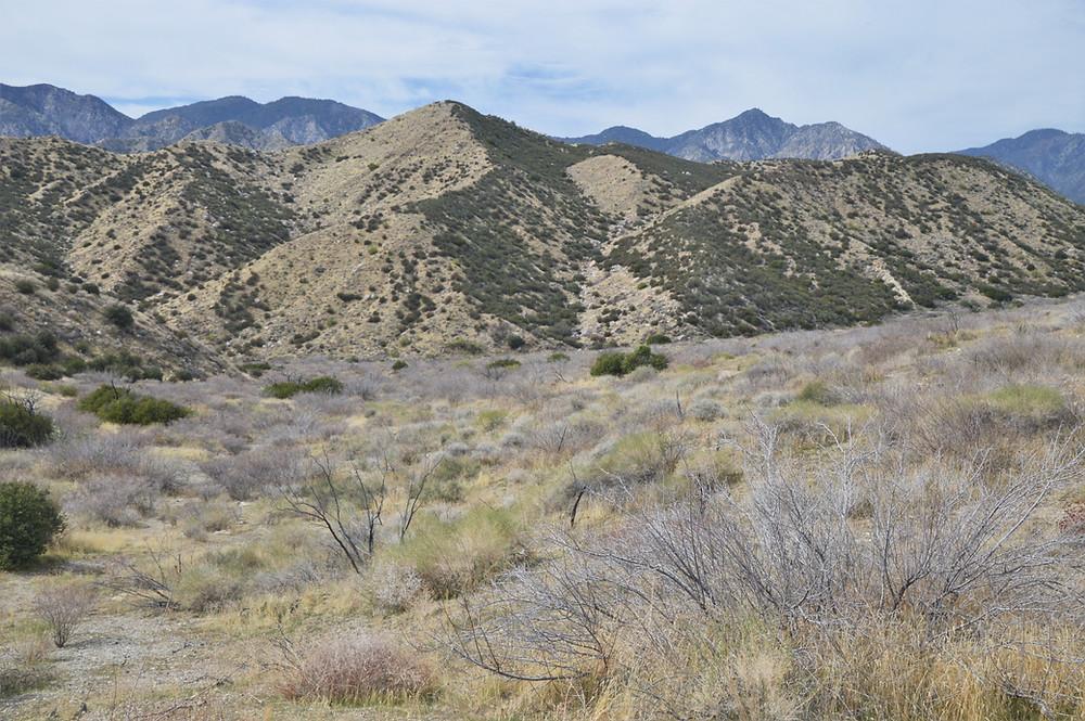 Hiking PCT in the Whitewater Preserve of San Bernardino Mountains