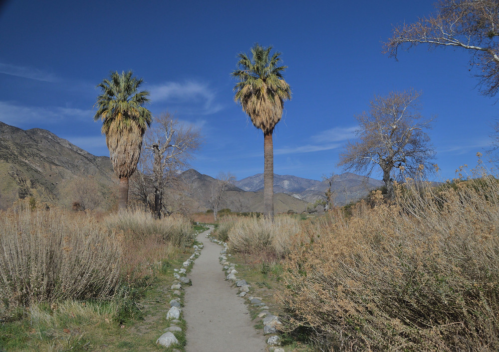 Trailhead for Whitewater Preserve hikes bordering San Gorgonio Wilderness