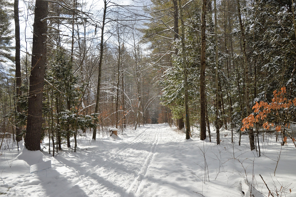 Wide slightly groomed snowshoeing trails at Beaver Brook Conservation Lands in Hollis New Hampshire