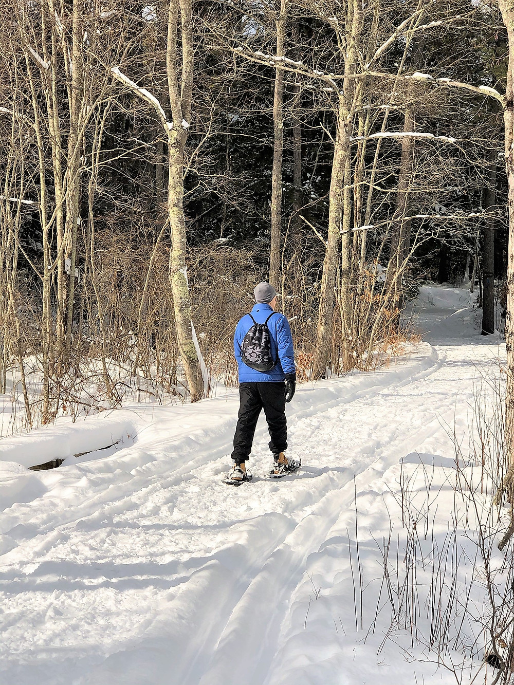Snowshoeing at Beaver Brook Conservation Lands in Hollis New Hampshire