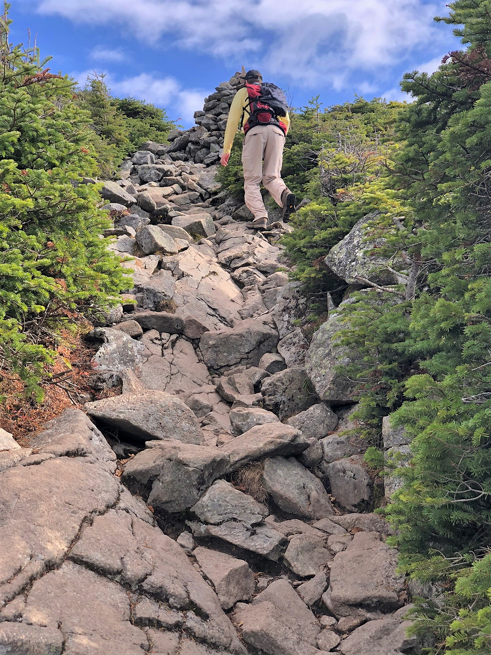 Mt Lafayette via Greenleaf Path. Eroded and rock covered trail in White Mountains of NH.