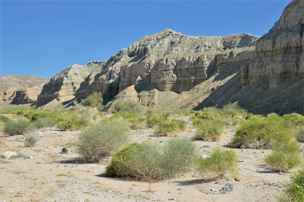 Mecca Hills sandwiched and uplifted by the San Andreas fault system