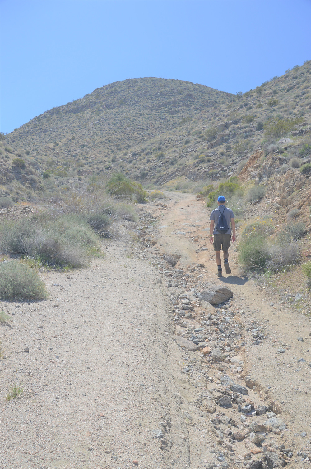 Hiking Dunn Road on the Cathedral Canyon Loop in the foothills of Santa Rosa Mountains