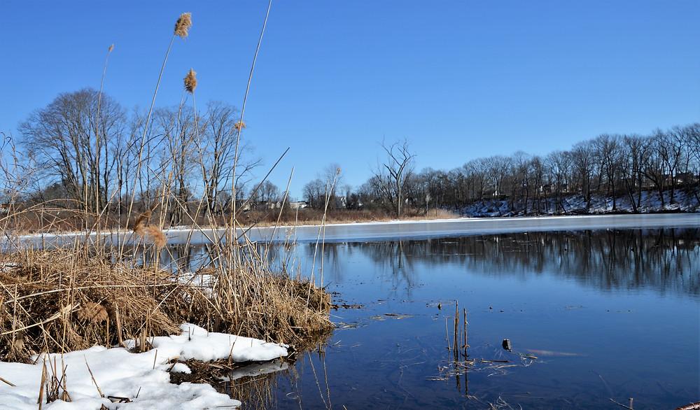 Oxbow Lake in Mine Falls Park along the Nashua River