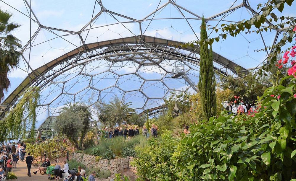 The Mediterranean Biome is home to over 1,300 different plant species from California, South Africa and Western Australia