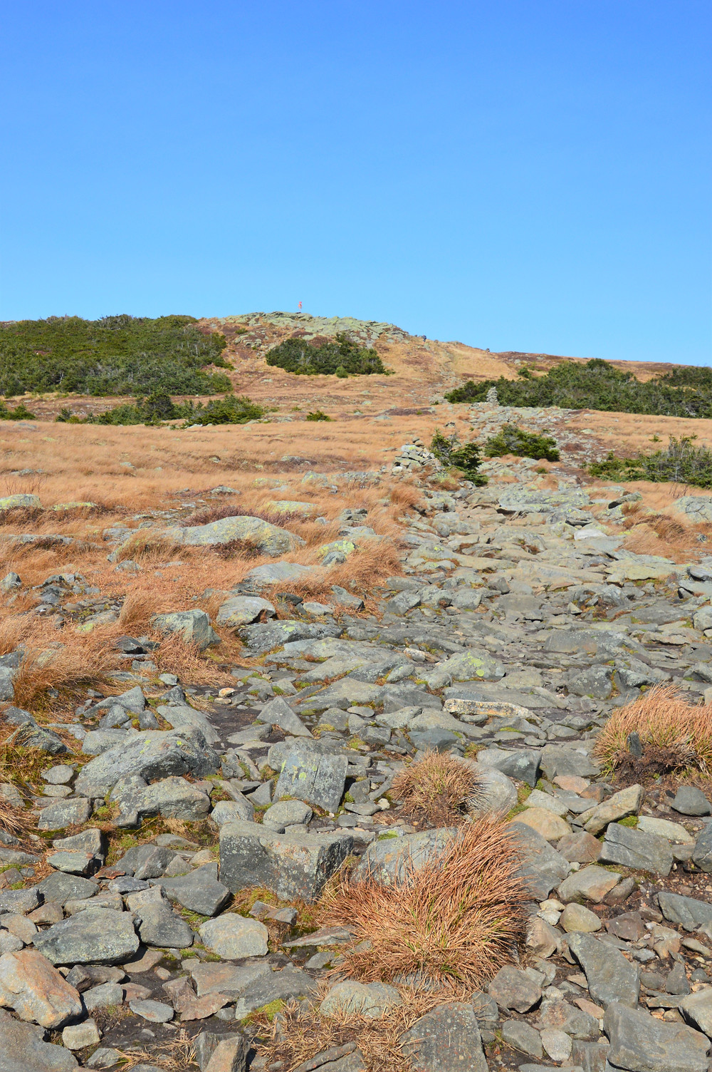Rocky trail along the alpine zone approaching the Mt Moosilauke summit in NH. NH 4000 footer