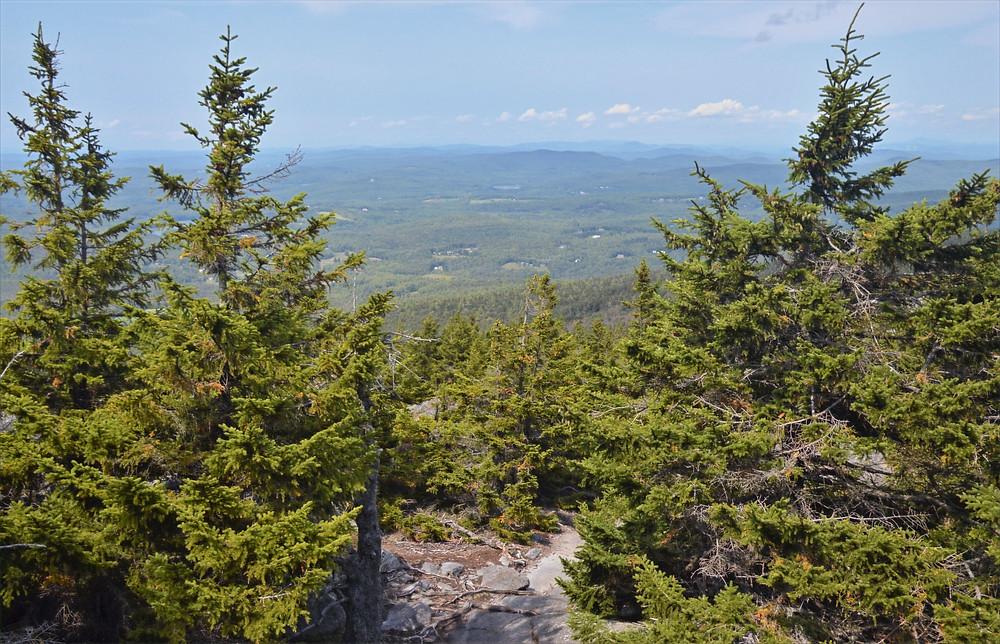 Mount Monadnock Pumpelly Trail