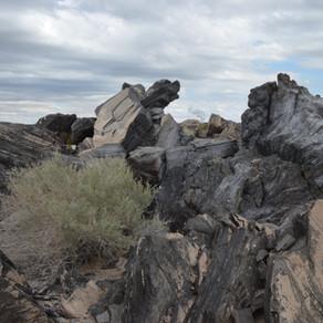 Walking on Volcanic Domes in the Salton Sea Area: Mar 2020