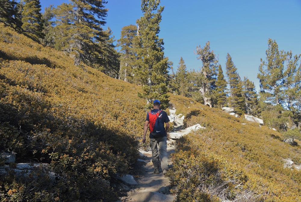 San Jacinto trail traversing the mountain