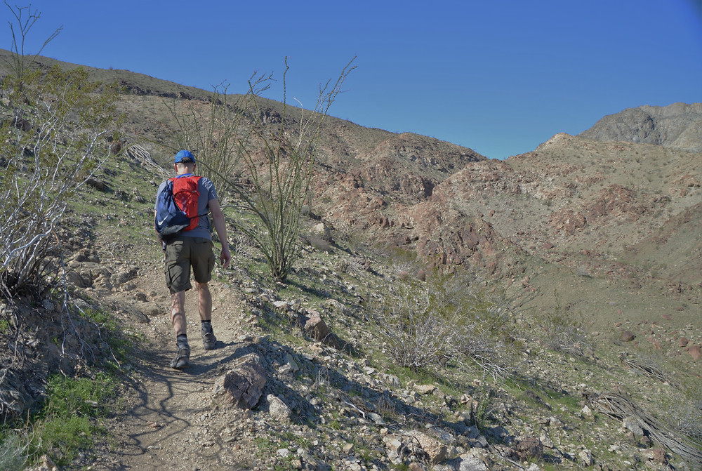 Steady climb into foothills of the Santa Rosa Mountains on the Bear Creek Oasis Trail