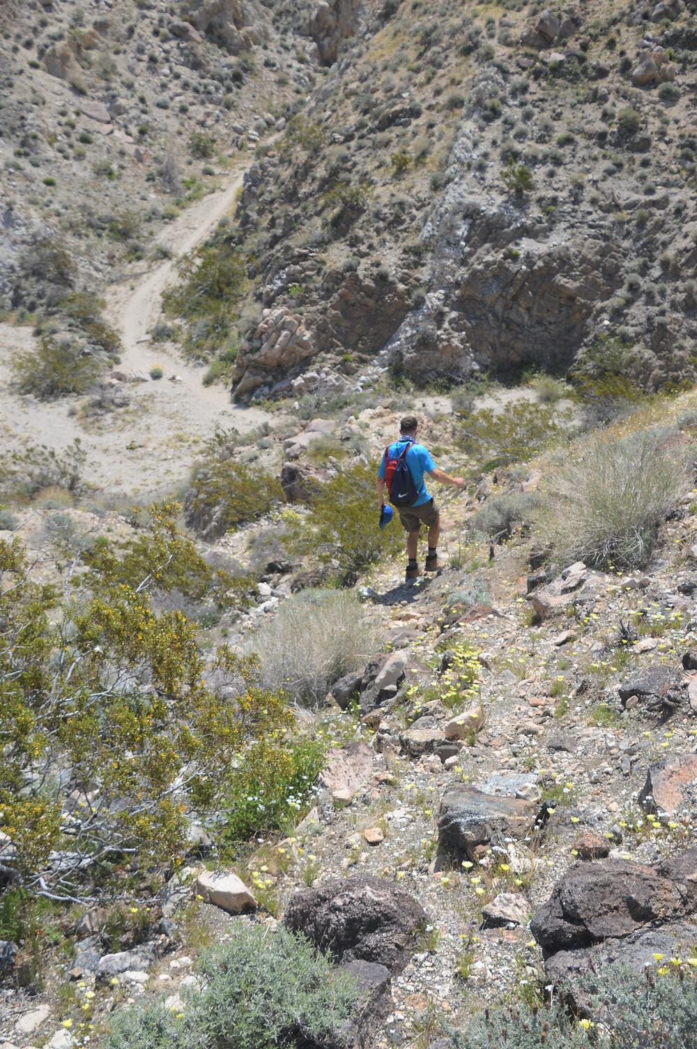 Descending from Chocolate Drop Hill in the Little San Bernardino Mountains