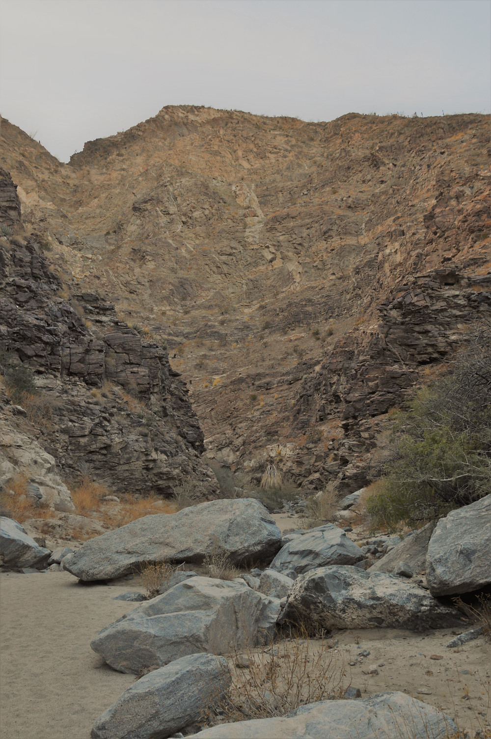 Carrizzo Canyon walls rising quickly in the Santa Rosa Mountains in Palm Desert CA