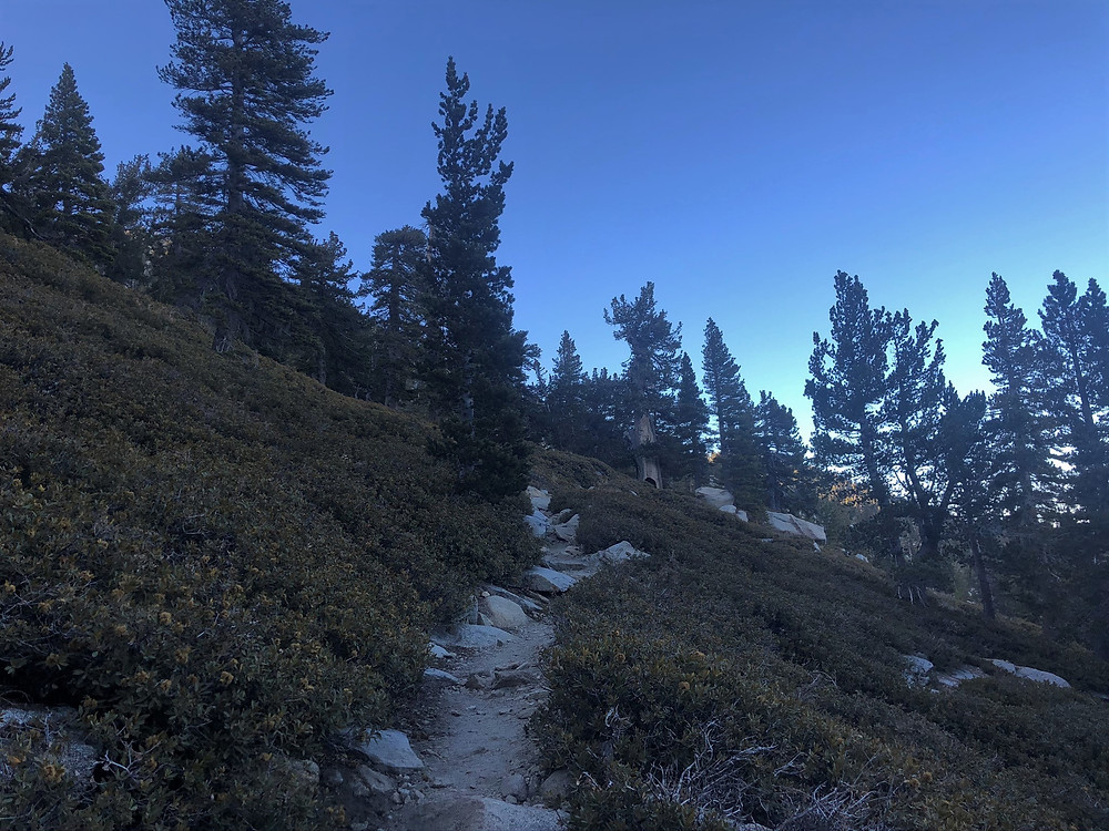 Dusk on trail returning from the San Jacinto summit