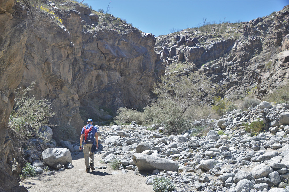 Lost Canyon trail in the Santa Rosa Mountains