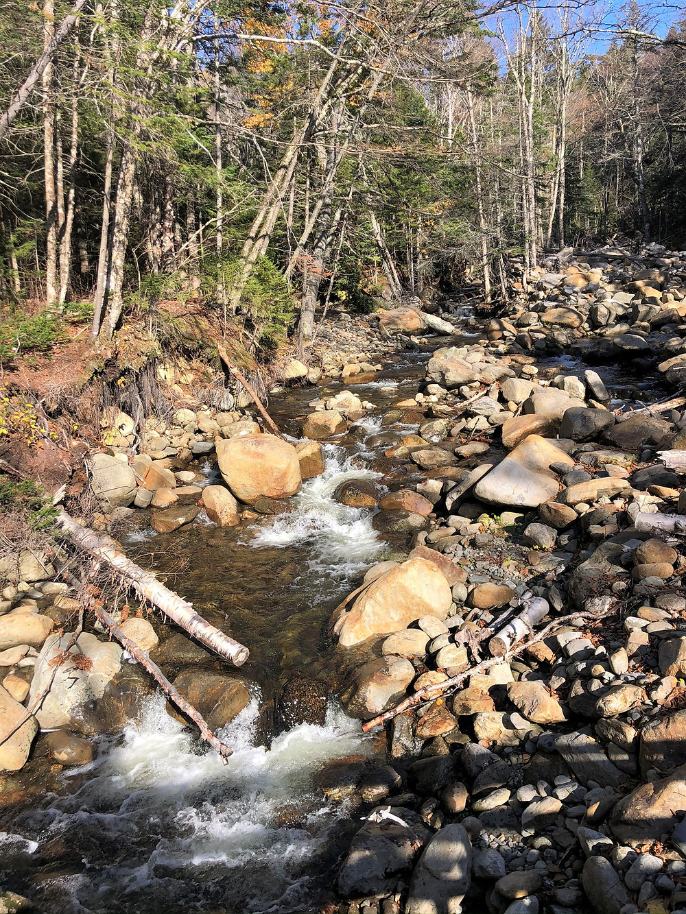 Not much flow in the Baker River on the trail leading to the summit of Mt Moosilauke in NH.  NH 4000 footer