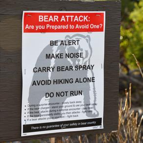 Hike Paintbrush Canyon in Grand Teton National Park, WY