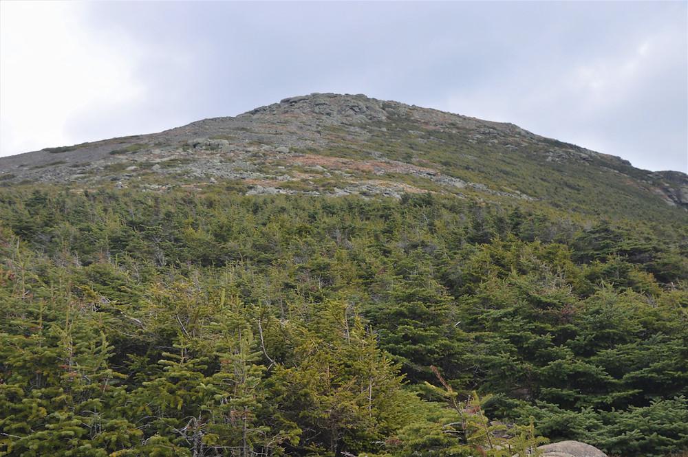 Summit of Mt Lafayette in the Franconia Mountain Range
